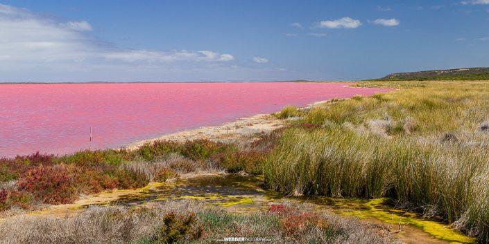 Hutt Lagoon : Webber Photography